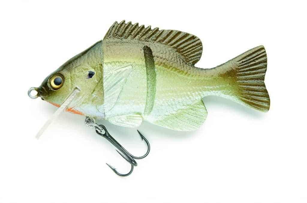 Hard Head Baby Sunfish