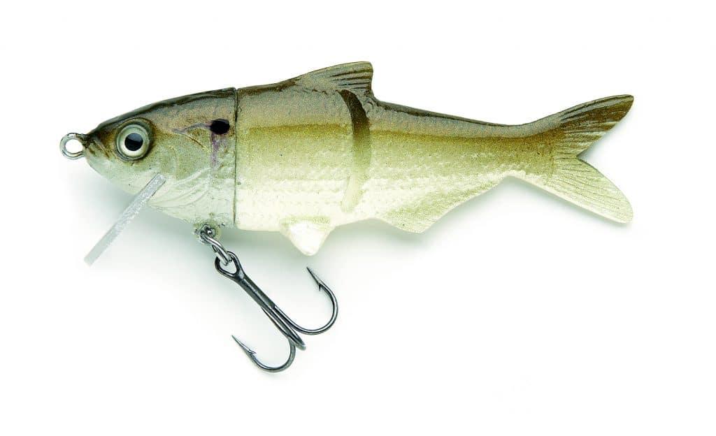 Threadfin Shad Green Hard Head